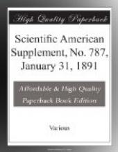 Scientific American Supplement, No. 787, January 31, 1891