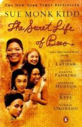 The Civil Rights Theme in The Secret Life of Bees