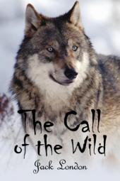 Narration in the Call of the Wild