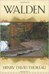 Cutting the Darkness in Walden