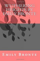 The Use of Atmospheric Conditions in Emily Bronte