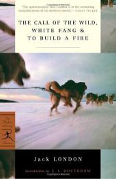 "Literary Techniques in ""To Build a Fire"""