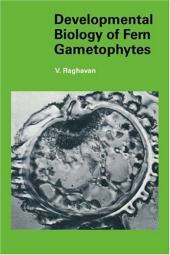 Gametophyte