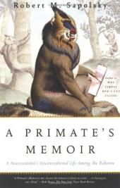 Primates, Visual Perception and Memory in Nonhuman