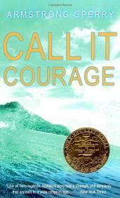 Call It Courage (BookRags)