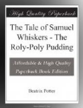 The Tale of Samuel Whiskers or, The Roly-Poly Pudding
